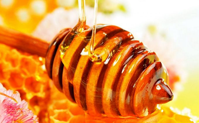 The importance of Gerês honey