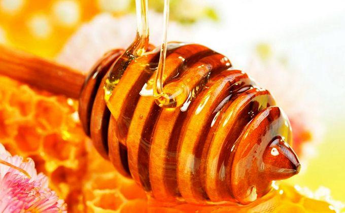 L'importance du miel de Gerês