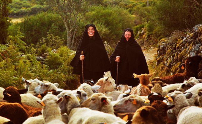 27 raisons de visiter Gerês